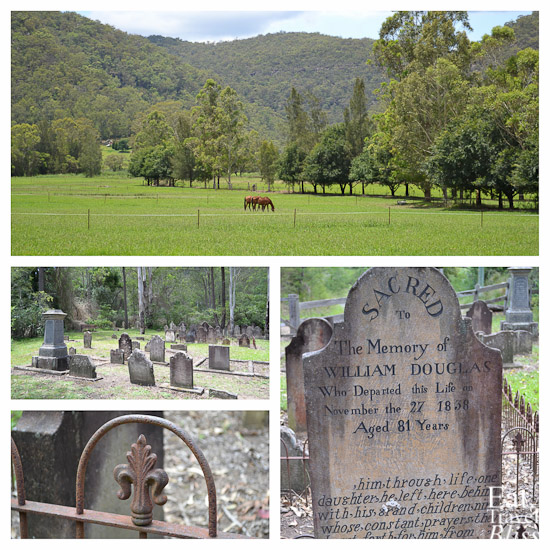 Lush paddocks along the way on both sides of the Macdonald River; the St Albans Old General Cemetery