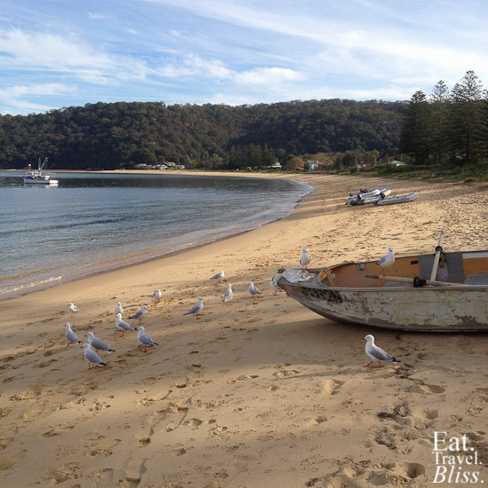 Patonga - beach & boat