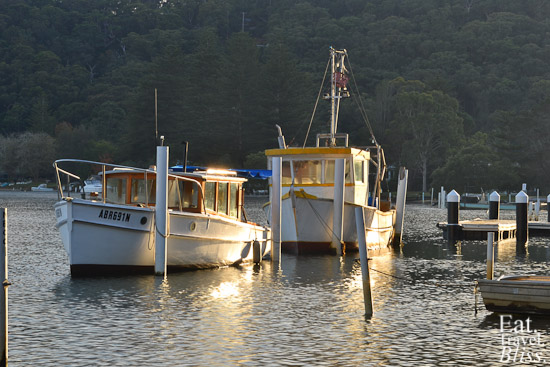 Patonga - fishing boats in the creek