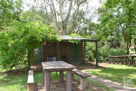 St Albans - pub - backyard