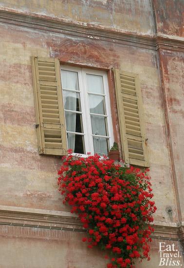 Orta - flowers